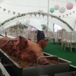 Whole Pig Roasted For An Indoor Event